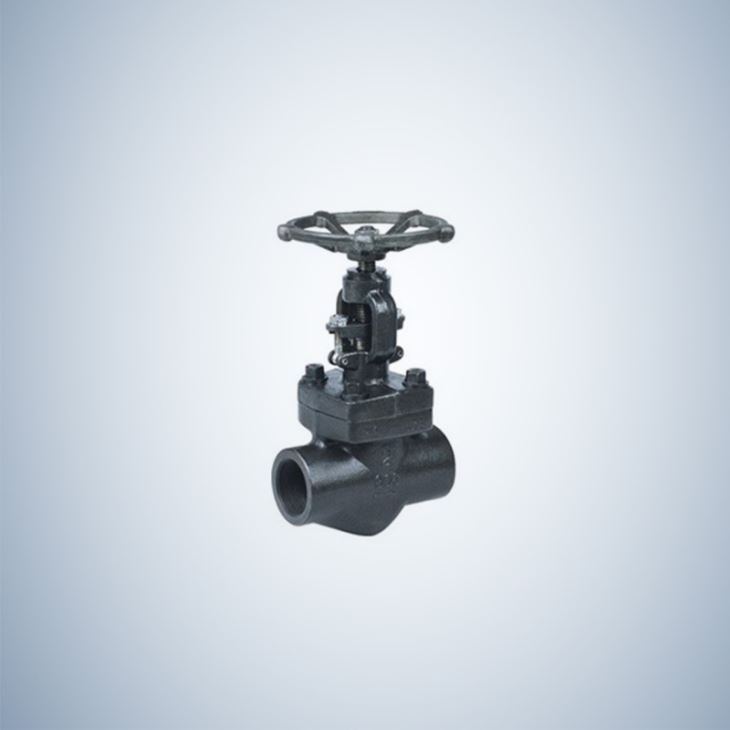900Lb Forged Gate Valve