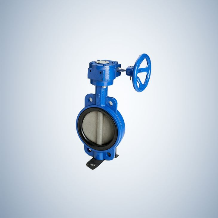 Disc Wafer Type Concentric Butterfly Valve