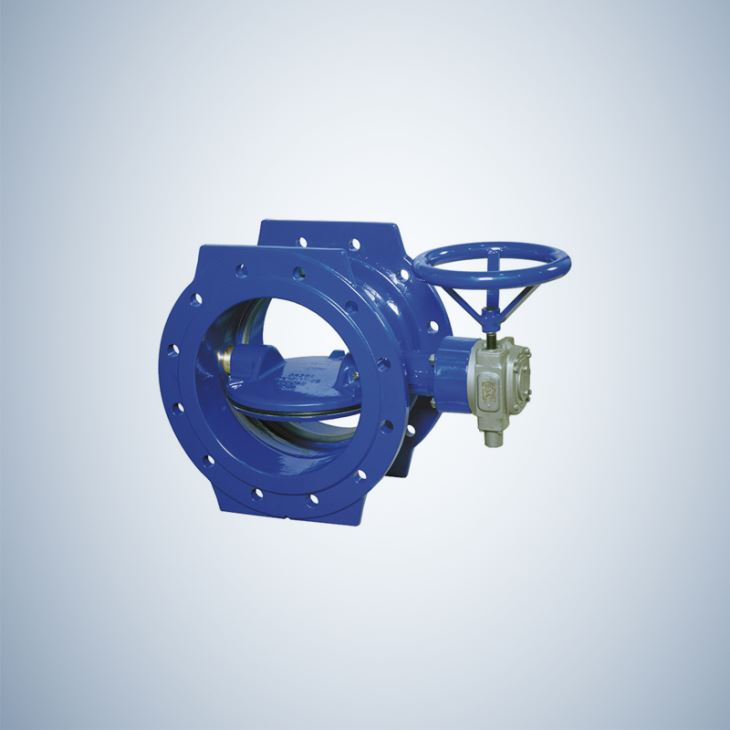 Double Flange Double Offset Butterfly Valve