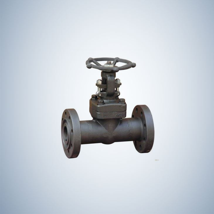 150Lb Forged Steel Gate Valve