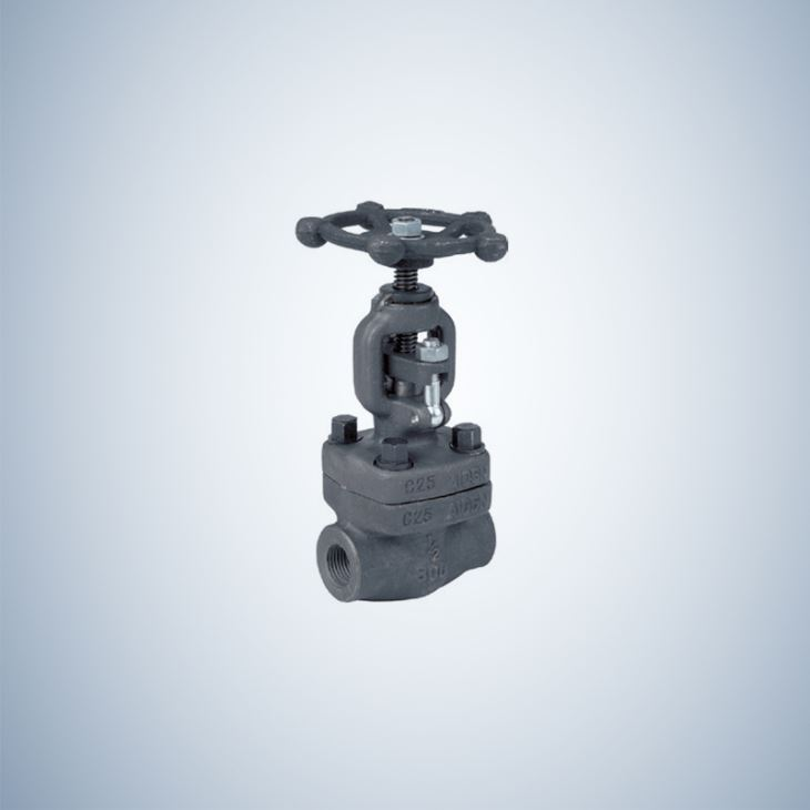 2 Inch Forged Steel Gate Valve