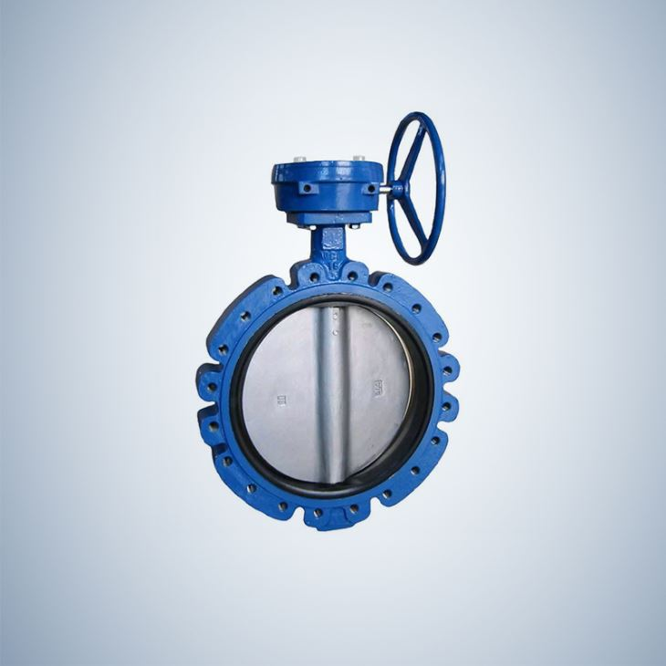 Gear Operated Worm Gear Actuated Lug Concentric Butterfly Valve