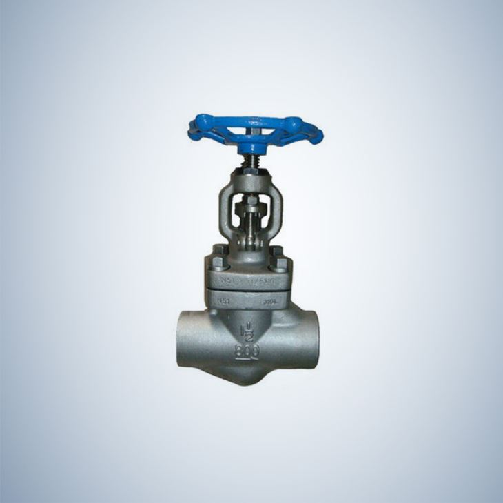 Hand Wheel Operated SW Ends Forged Globe Valve
