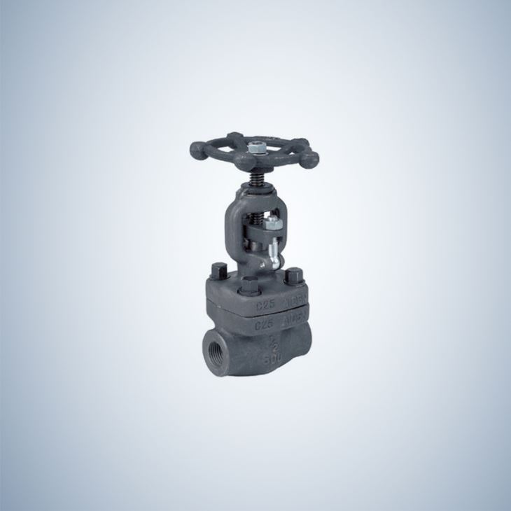 NPT Ends Forged Gate Valve
