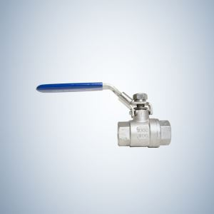 1000 WOG Stainless Steel 2 Piece Threaded Ball Valve