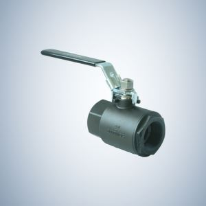 2 Inch 8000 WOG 2 Piece Threaded Ball Valve