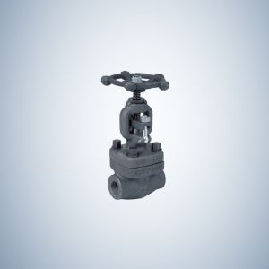 2 Inch Gate Valve 2 Inch Forged Steel Gate Valve