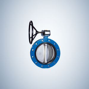 8 Inch Flanged Concentric Butterfly Valve
