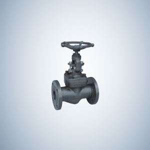 A105 Flanged Forged Steel Gate Valve