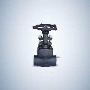 Bolted Bonnet SW Ends Forged Globe Valve