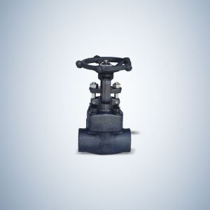 Bonney Forge Bolted Bonnet Forged Gate Valve