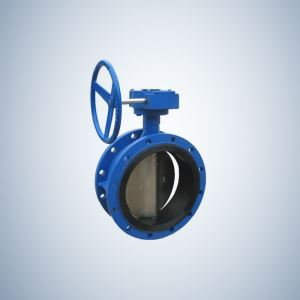 Cast Iron Concentric Butterfly Valve