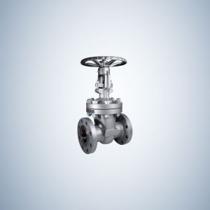 Cast Steel Gate Valve Flanged