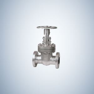600Lb Cast Steel Gate Valves