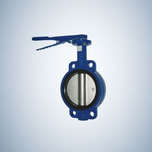 Ductile Iron Wafer Concentric Butterfly Valve