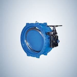 Eccentric Double Offset Butterfly Valve