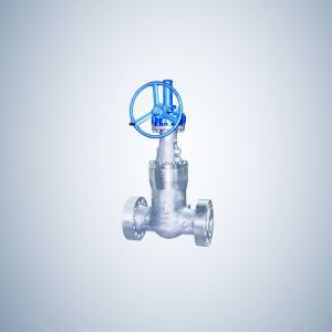 Flanged Pressure Seal Bonnet Gate Valve