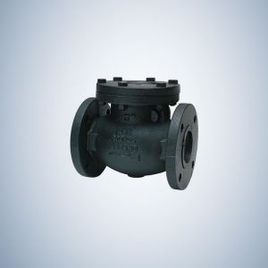 Forged Check Valve Flanged