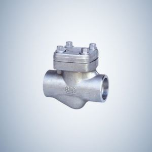 Forged Check Valve Socket Weld
