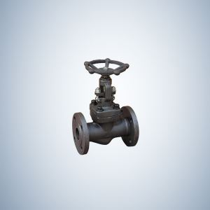 Forged Steel Gate Valve Flange Ends