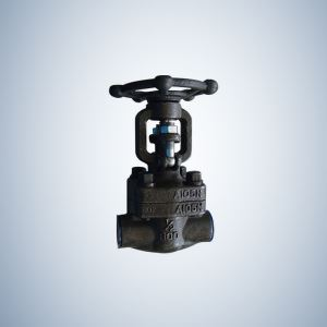 Forged Steel Gate Valve Hand Opearte