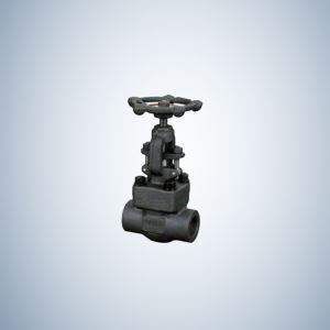 Valves Forged Steel Gate Valve SW Ends