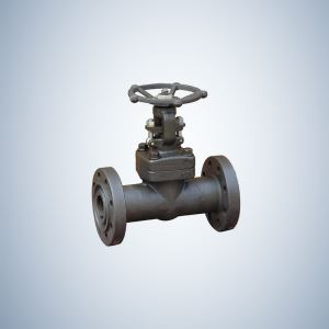 Forged Steel Globe Valve Flanged Ends
