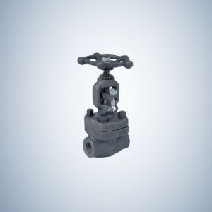 Gate Valve 2 Inch 2 Inch Forged Steel Gate Valve