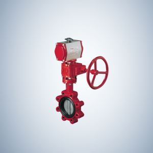 Gearbox Operated Triple Offset Butterfly Valve