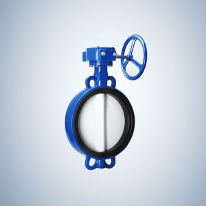 Rubber Seat Lug Type Concentric Butterfly Valve