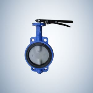 Class 125 Lugged Type Concentric Butterfly Valve
