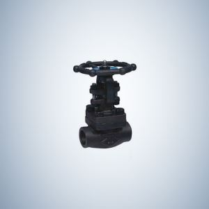 Socket Weld Ends forged Steel A105 Globe Valve