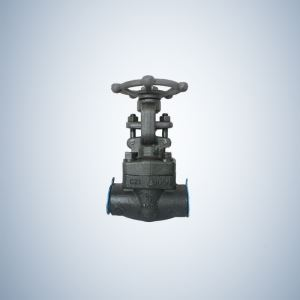 SW Ends A105 Forged Gate Valve