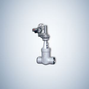 Electrical Casting Pressure Seal Gate Valve