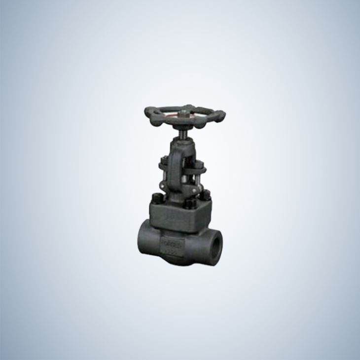 Socket Weld Forged Gate Valve