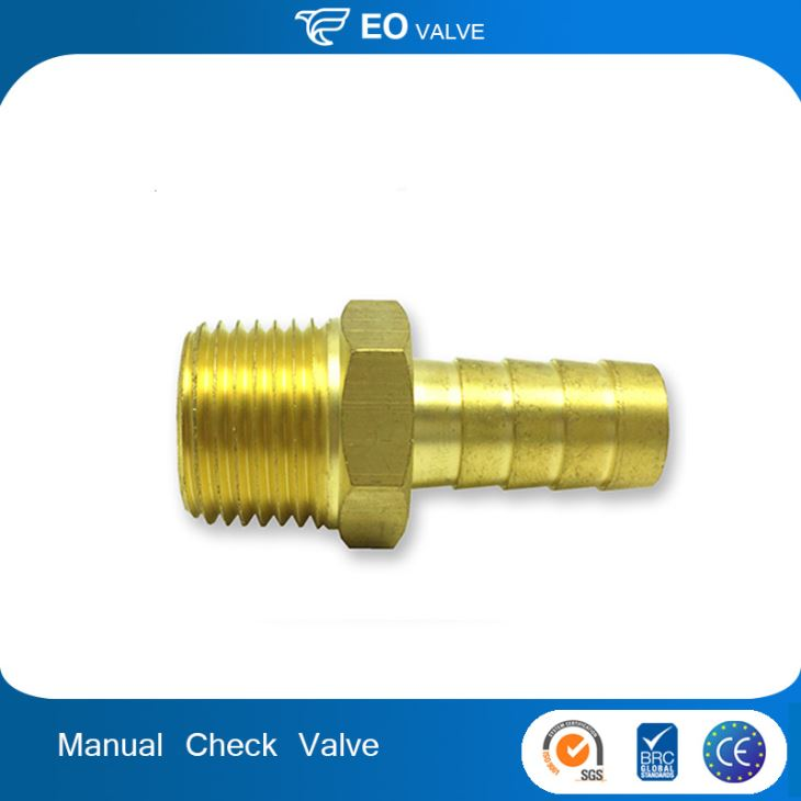 Boutique Manual Control Female Thread Brass Swing Check Valve