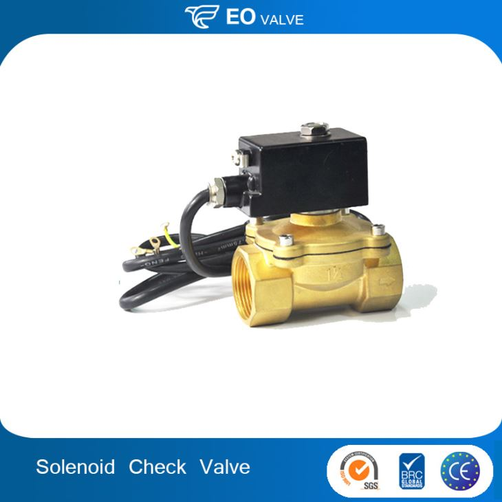 Easy To Control Safety Explosion Proof Nature Gas Check Solenoid Valve