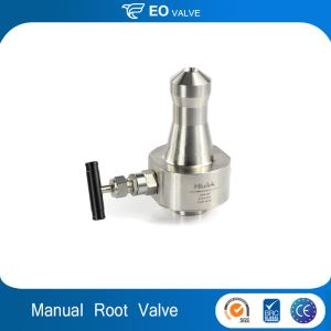 Flange Butt Weld Stainless Steel Instrument Root Valve