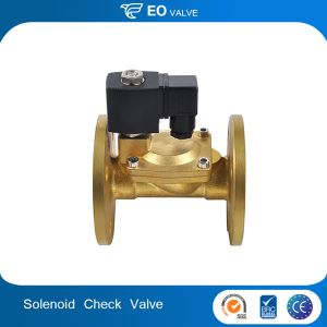 Steam Brass Flange Type Solenoid Check Valve