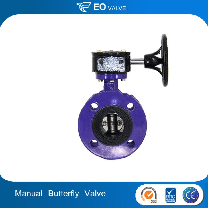 Stainless Steel Manual 4 Inch Flange Butterfly Valve