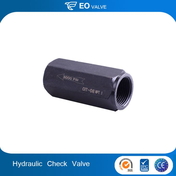 Top Quality And Low Price S Type Rexroth In-line Hydraulic Check Valve